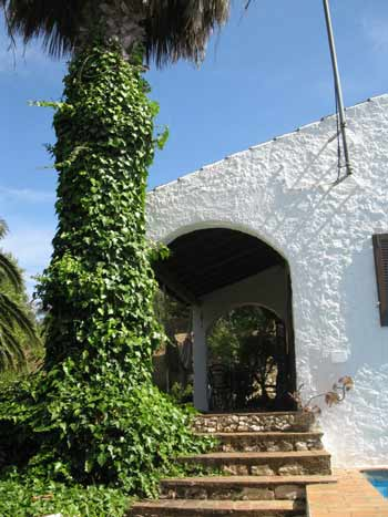 Quinta ALF, holiday home near Odiaxere, Algarve, Portugal - Staircase to terrace